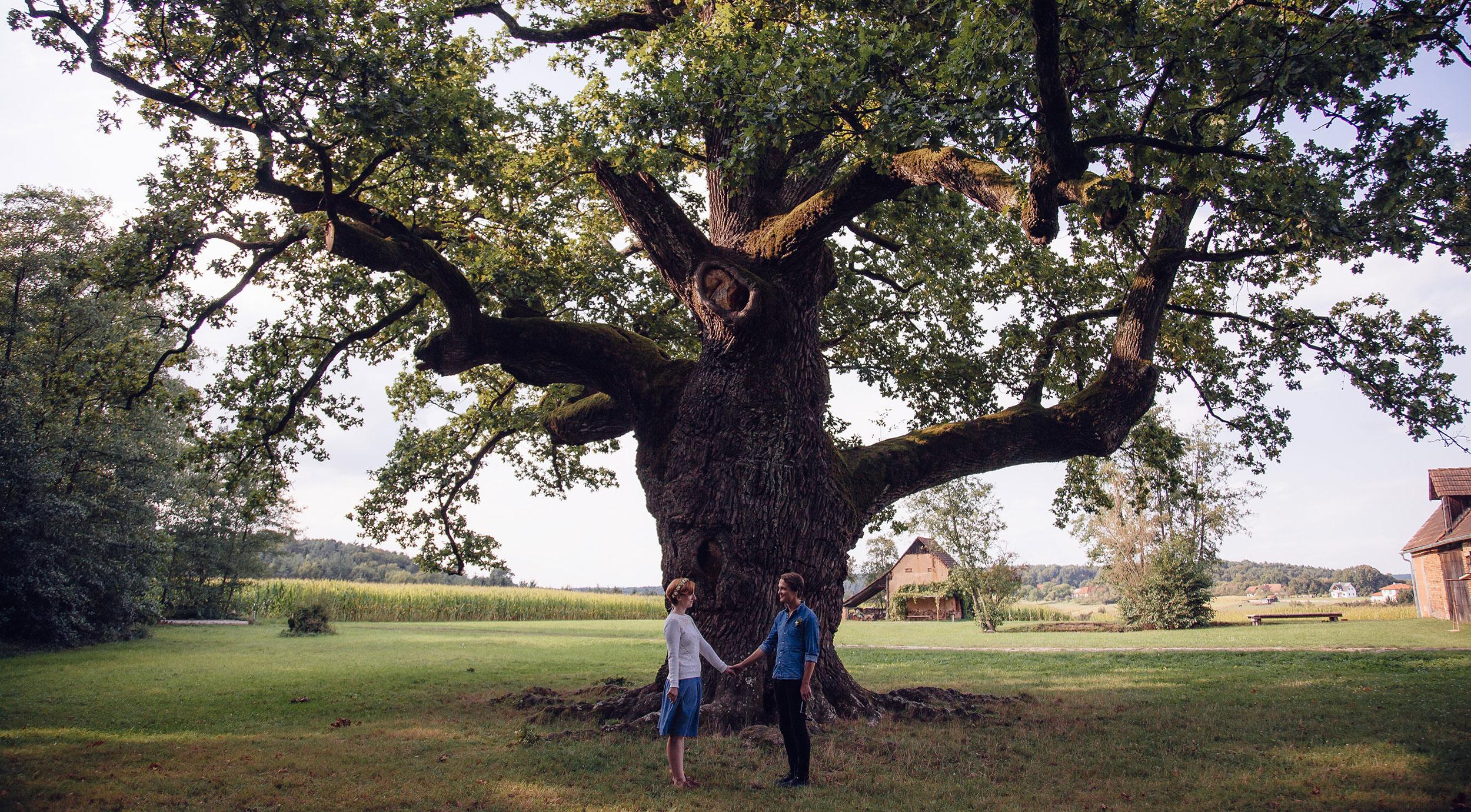 Verlobungsfotos Magdalena & Philipp vor 1000-jährige Eiche Bad Blumau